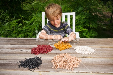 stock-photo-16935252-little-boy-counting-beans
